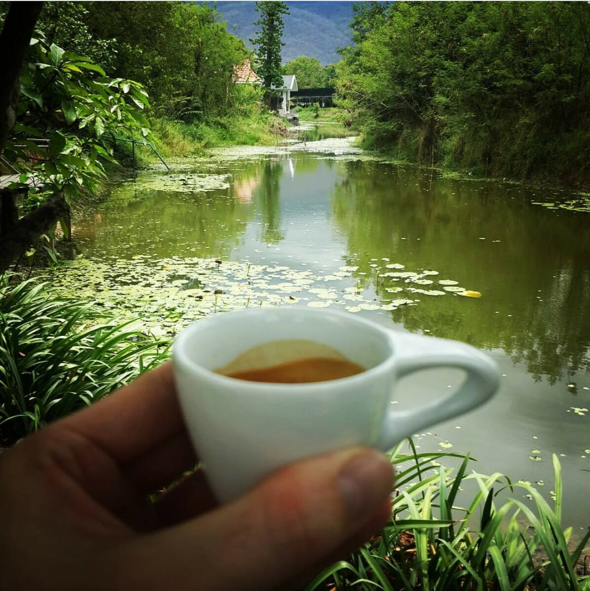 Asama Espresso